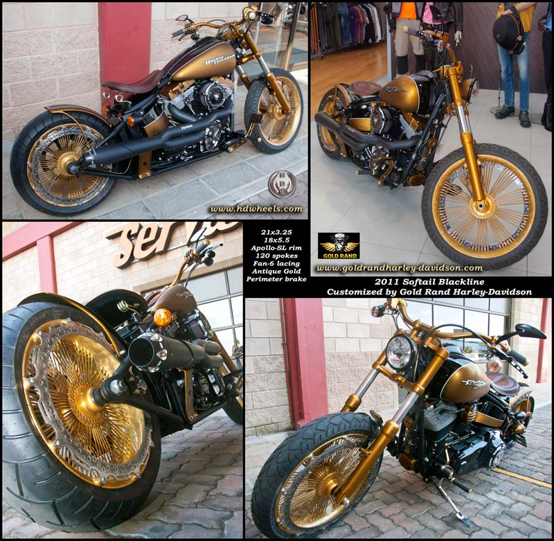 2011 Blackline by Gold Rand Harley